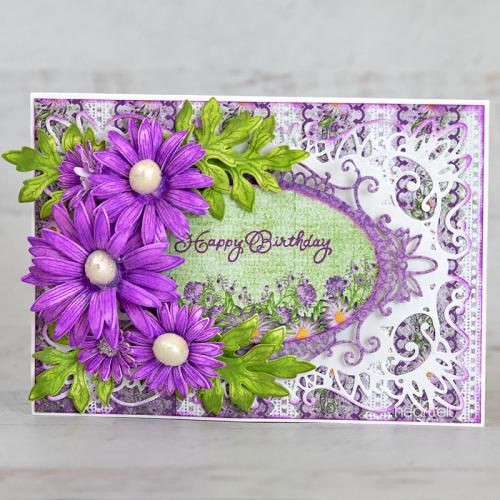 Violet Aster Birthday