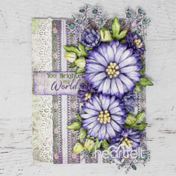 Worldly Asters