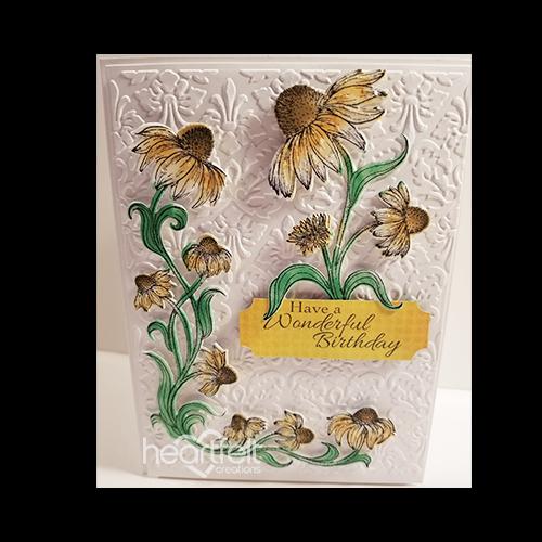 Wonderful Coneflower Birthday
