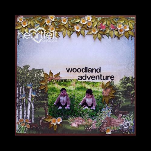 Woodland Adventure Layout