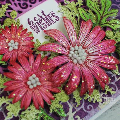 Pink Aster Wishes -Katarzyna Ewa Blakala_1A