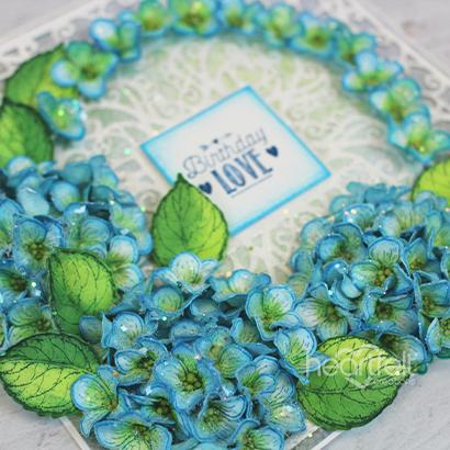 Vibrant Birthday Hydrangeas -Shalini Pahwa_1A